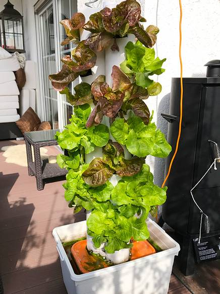 Plant tower outdoor