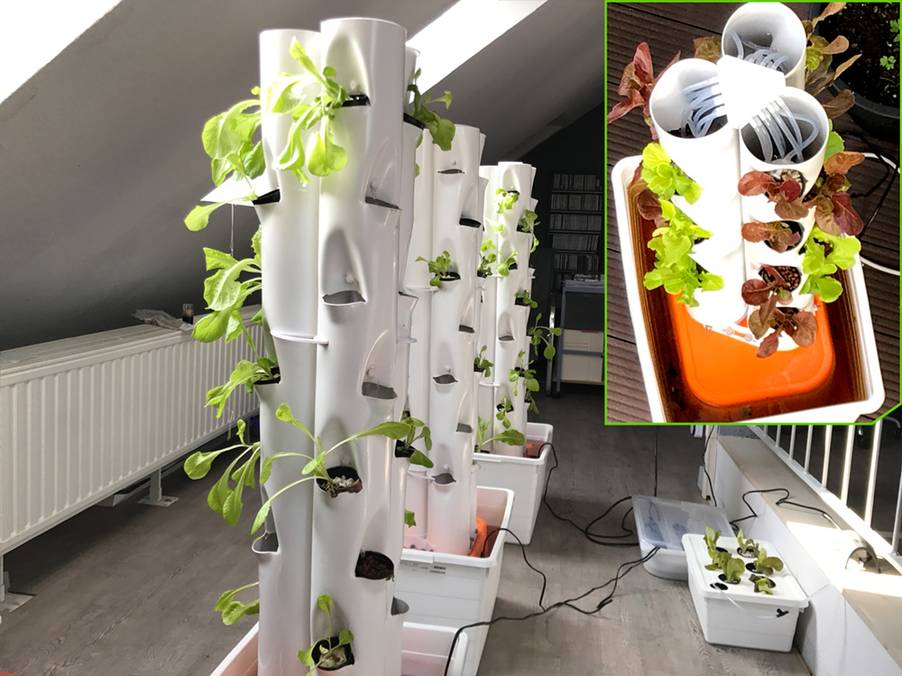 Plant towers in the office