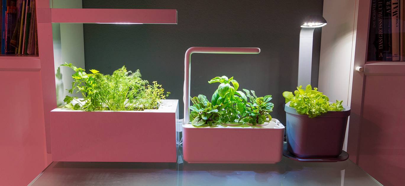 Hydroponic table-top systems
