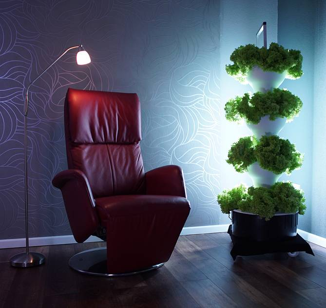Vertical Gardening in the living room