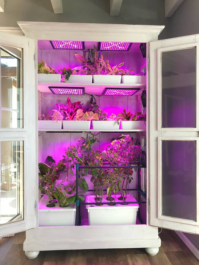 Hydroponics in the closet